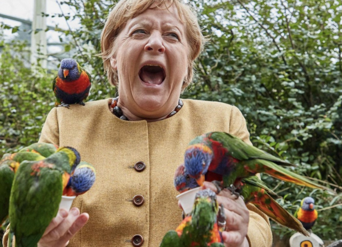 Buonanotte Frau Merkel, sedici anni di (non) cinema tedesco